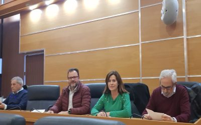 Consejo Municipal de Salud de Molina de Segura.